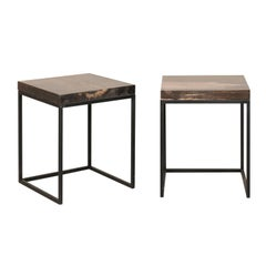Pair of Modern Style Petrified Wood and Metal Side Tables