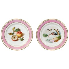 Pair of Painted Porcelain Cabinet Plates from Paris, 19th Century