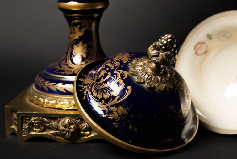 A pair of Sèvres Porcelain vases, circa 1880. The vases are finely painted and decorated with bronze gilded.