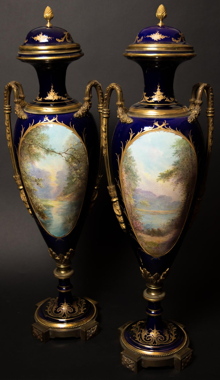 French Pair of Sèvres Vases, circa 1880 For Sale
