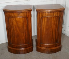 A pair of Victorian Flame Mahogany Pedestal Bedside Cabinets