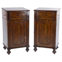 Pair of William IV Mahogany Pedestal Cupboards in the Manner of Gillows