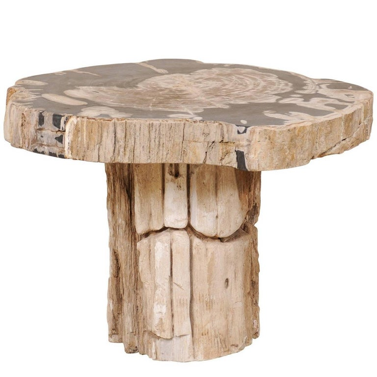 Petrified Wood Pedestal Coffee Table in Cream, Beige and Black Hues