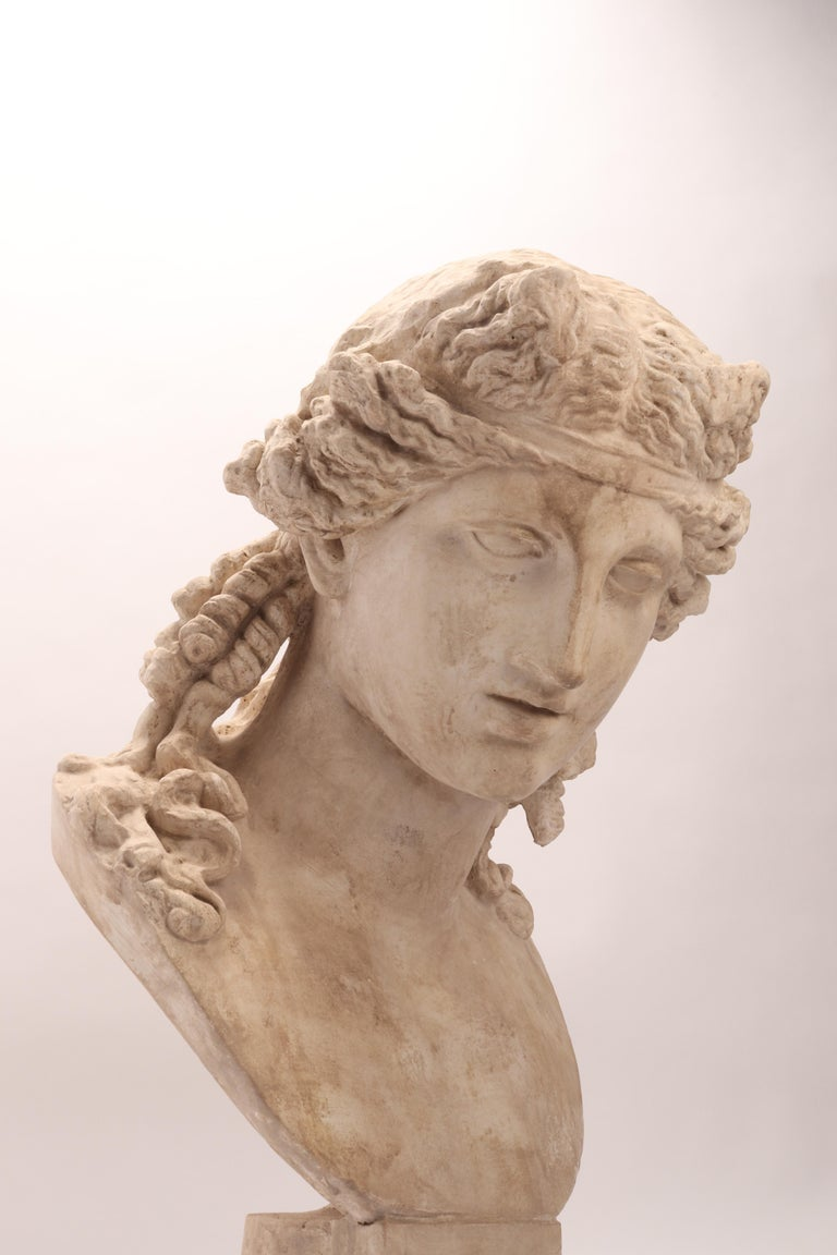 Plaster Cast the Head of Arianna, Italy, 1890 In Excellent Condition For Sale In Milan, IT