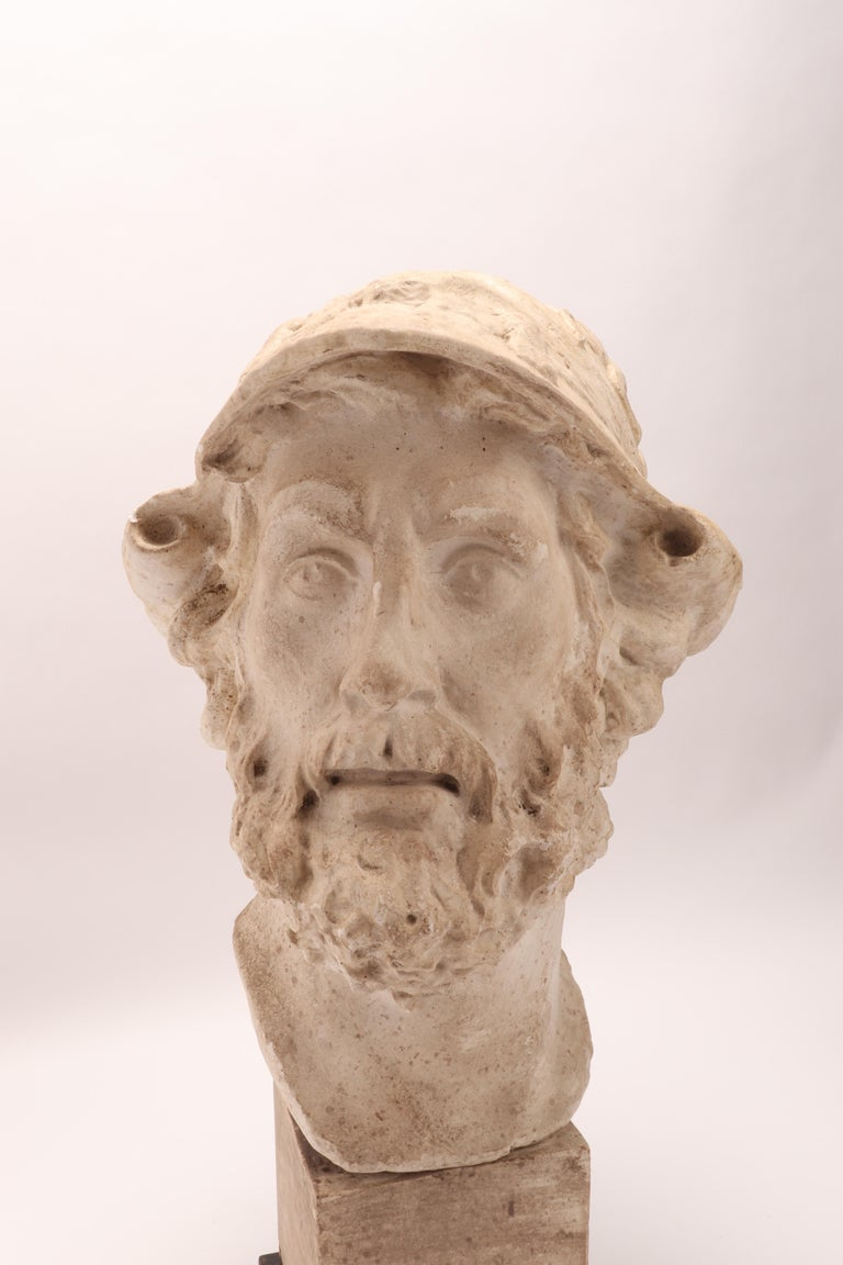 Italian Plaster Cast: the Head of Menelao, Italy, 1890 For Sale