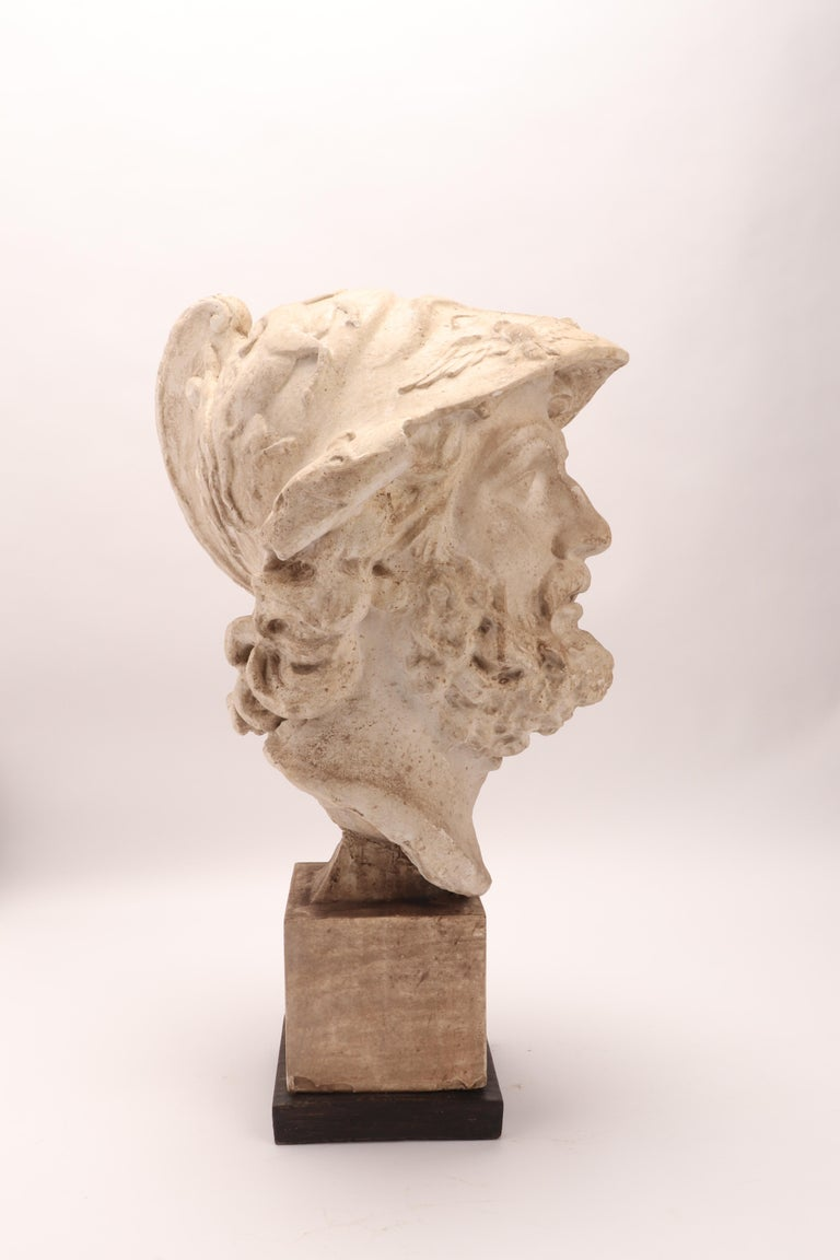 Plaster Cast: the Head of Menelao, Italy, 1890 In Excellent Condition For Sale In Milan, IT