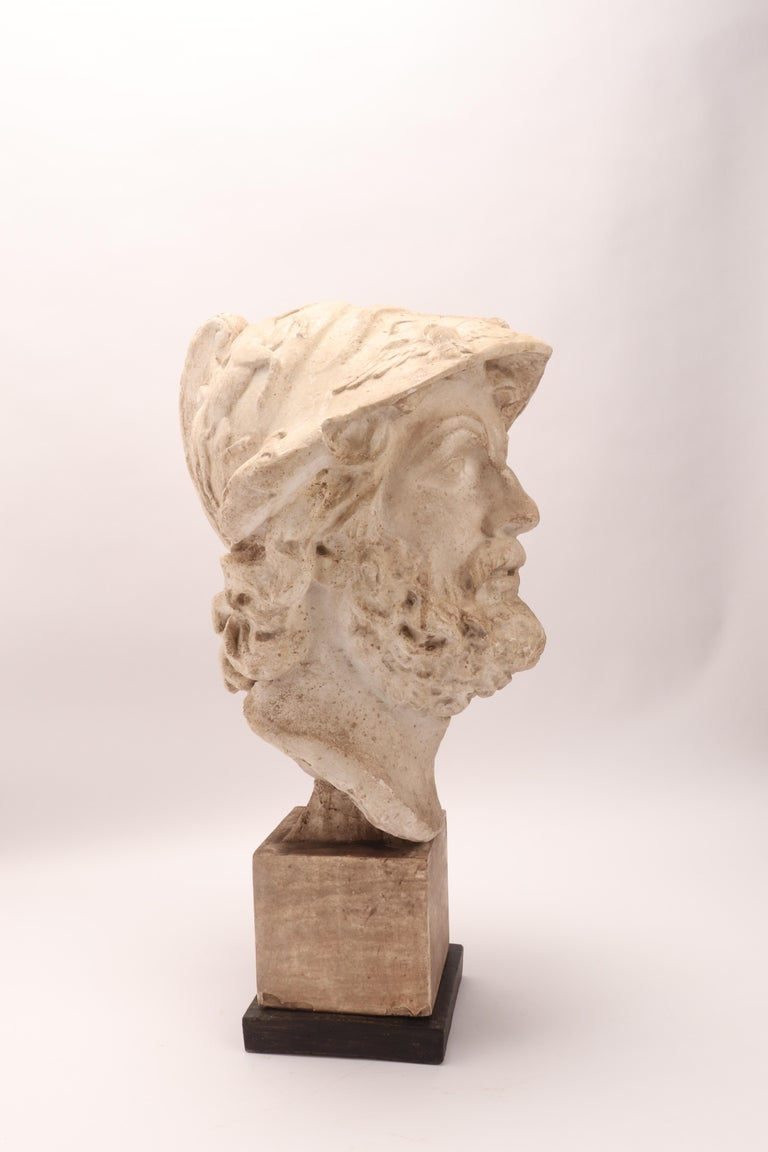 Plaster Cast: the Head of Menelao, Italy, 1890 For Sale 1