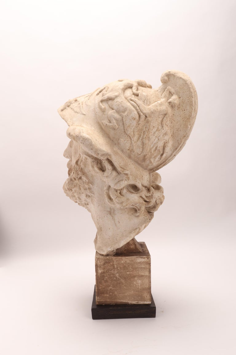 Plaster Cast: the Head of Menelao, Italy, 1890 For Sale 3