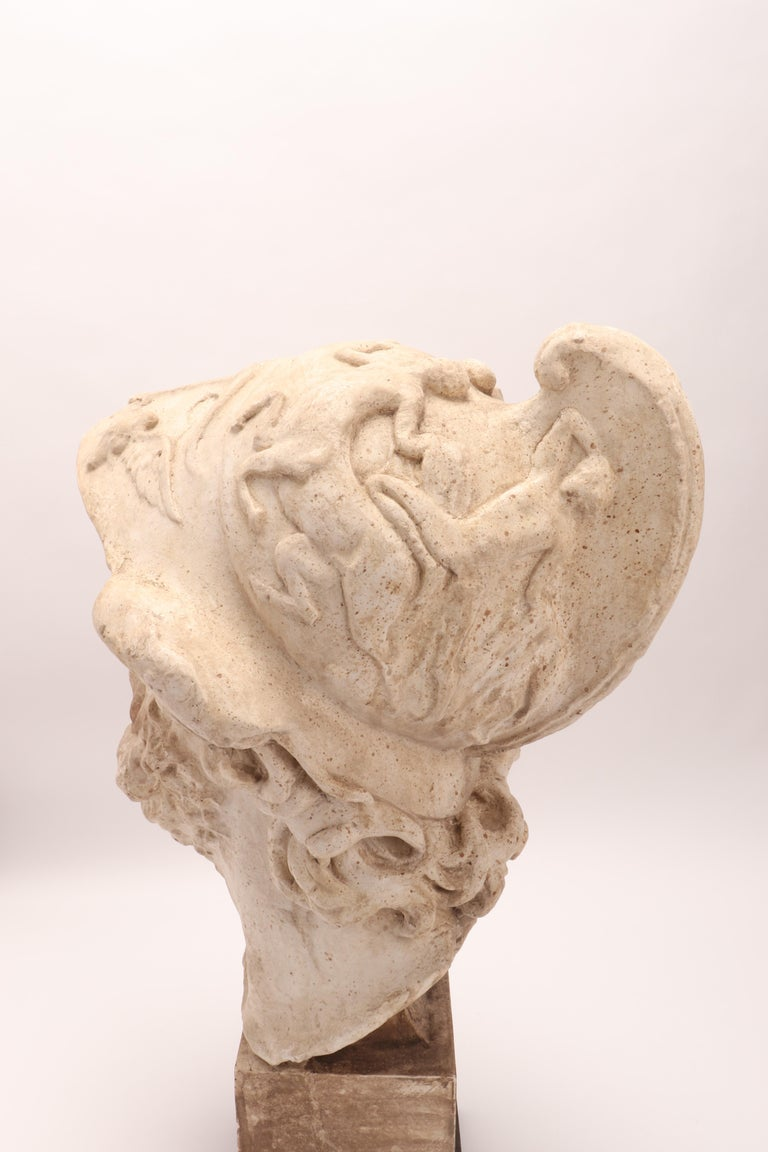 Plaster Cast: the Head of Menelao, Italy, 1890 For Sale 4