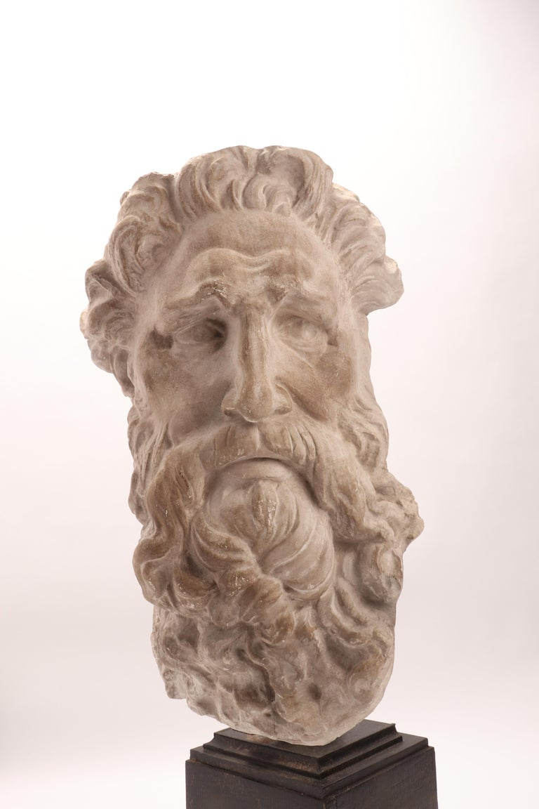 Plaster Cast the Head of Neptune, Italy, 1890 For Sale 3