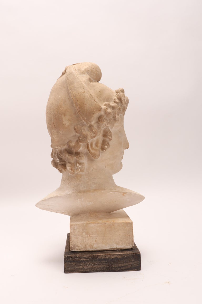 Late 19th Century Plaster Cast: the Head of Paride, Italy, 1890 For Sale