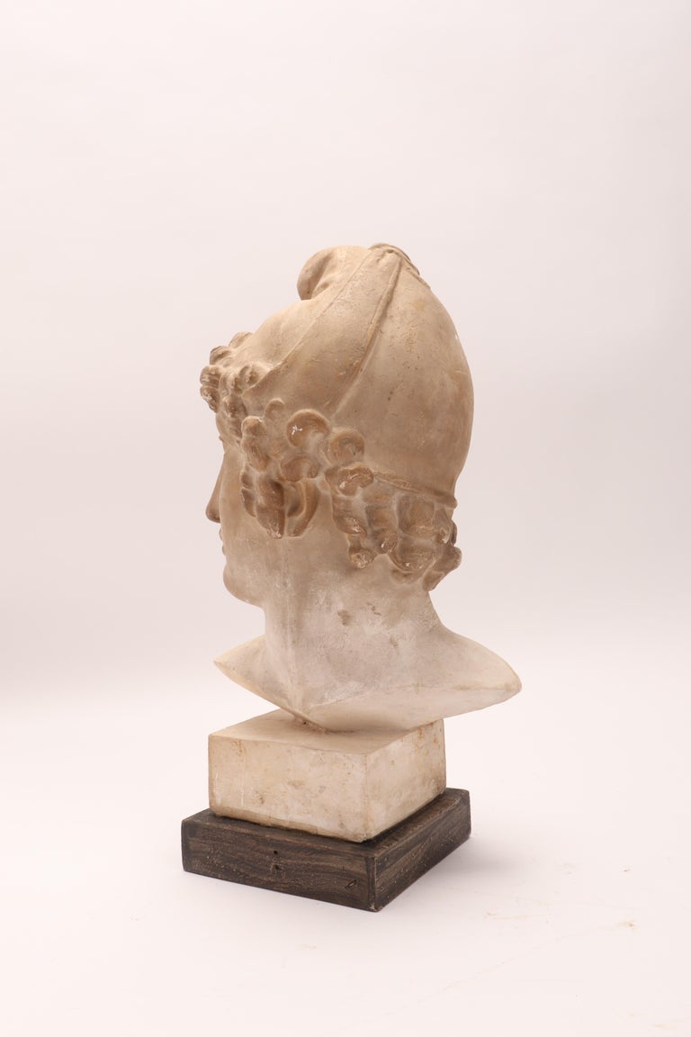 Plaster Cast: the Head of Paride, Italy, 1890 For Sale 2