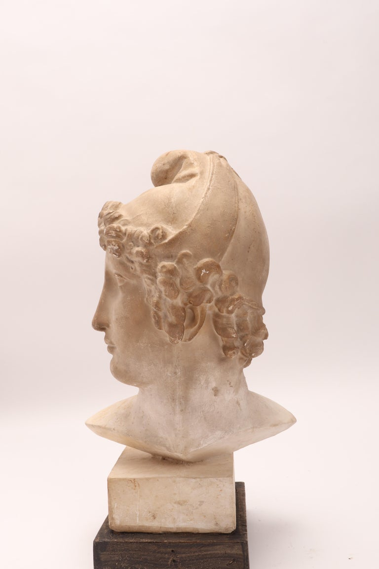 Plaster Cast: the Head of Paride, Italy, 1890 For Sale 3