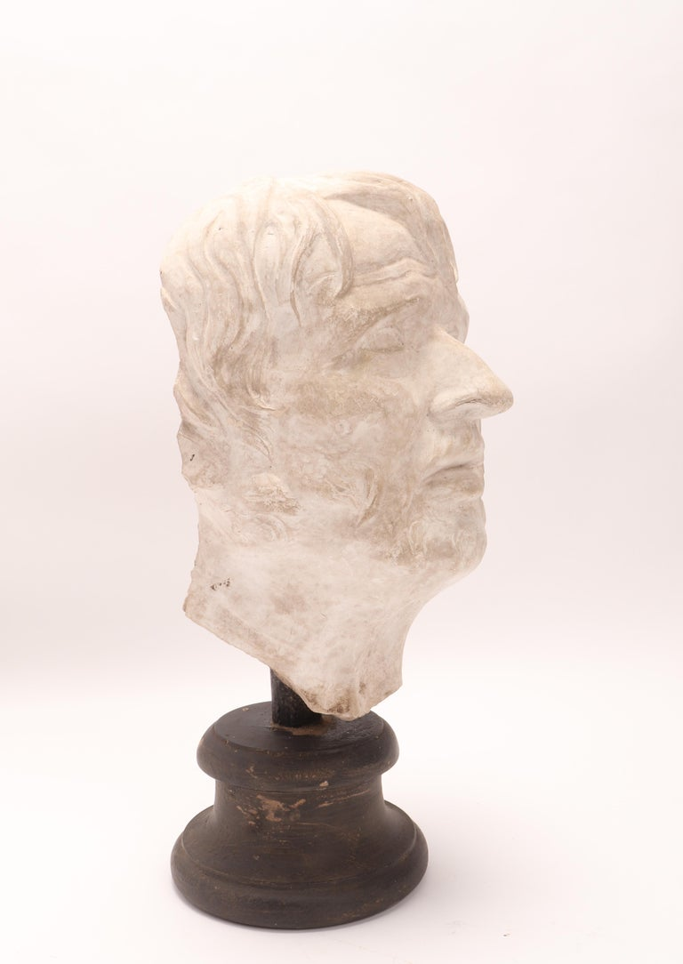 Italian Plaster Cast: the Head of Seneca, Italy 1890 For Sale