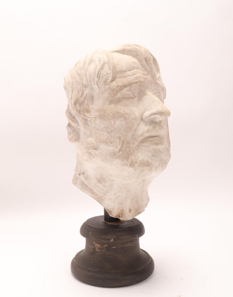 Plaster Cast: the Head of Seneca, Italy 1890 For Sale 2