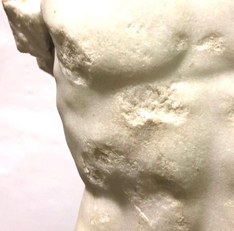 A Roman Marble Male Torso, circa 2nd Century AD 6