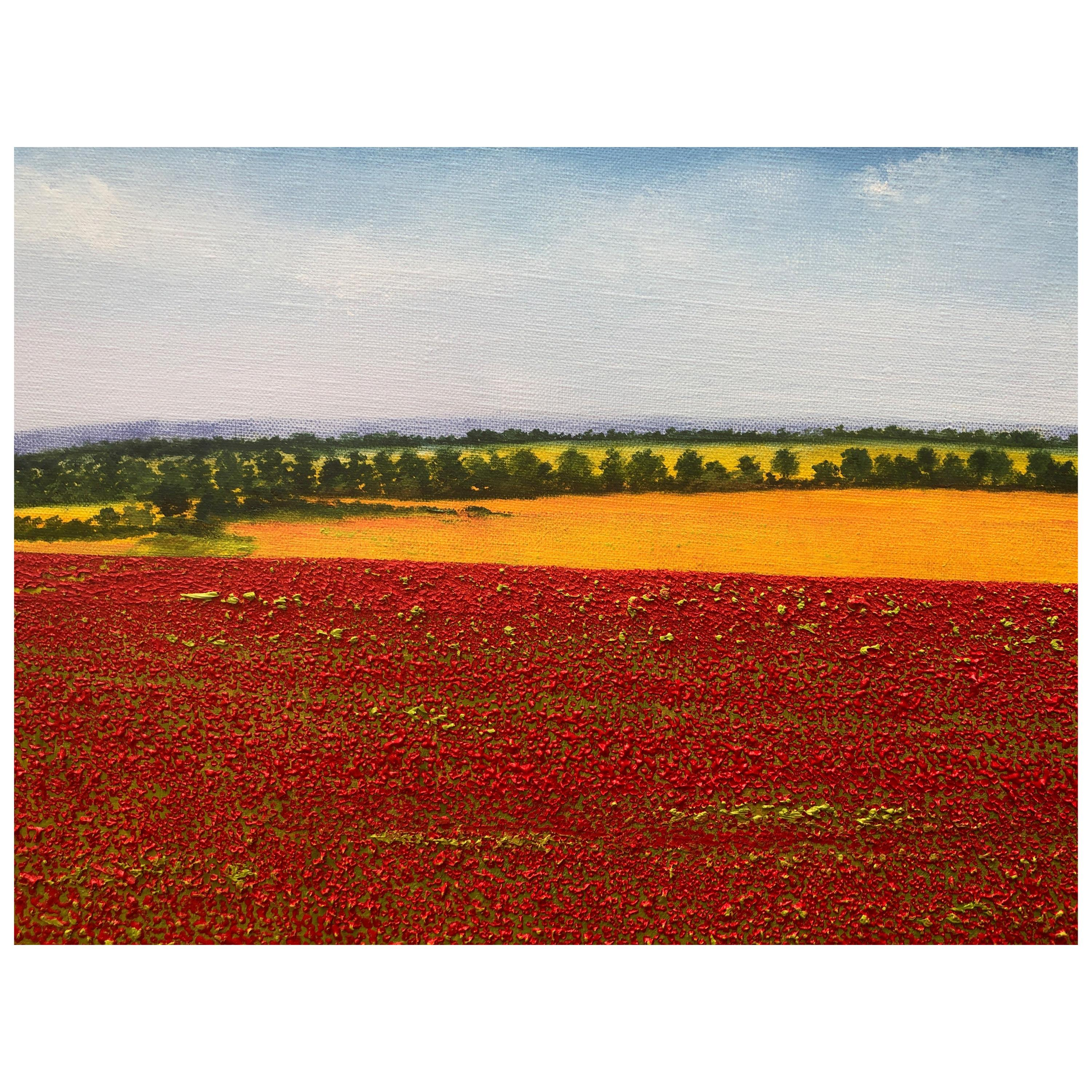 """""""A Sea Of Poppies"""" Contemporary Oil Painting by David Williams"""