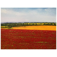 """A Sea Of Poppies"" Contemporary Oil Painting by David Williams"