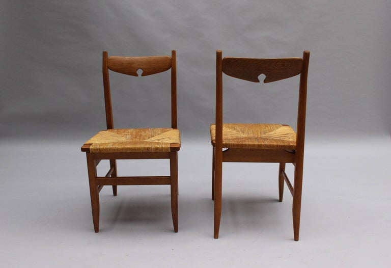 Mid-Century Modern Set of Six French Mid-Century Dining Chairs by Guillerme et Chambron For Sale