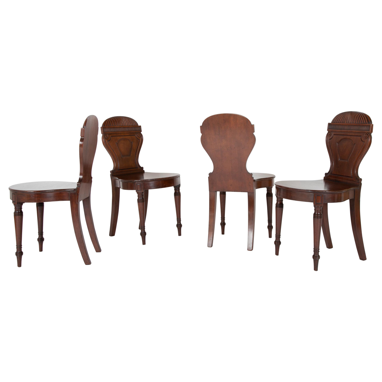 Set of Four English Balloon Back Georgian Hall Chairs
