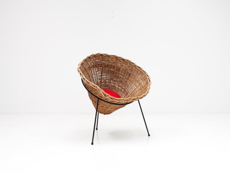 20th Century Terence Conran C8 Cone Chair, Conran Furniture, England, 1954 For Sale