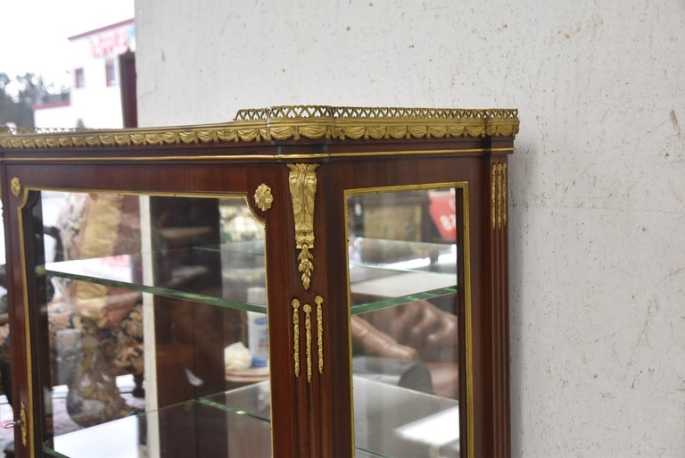 Gilt Very Fine 19th Century French Viewing Vitrine Attributed to F. Linke For Sale