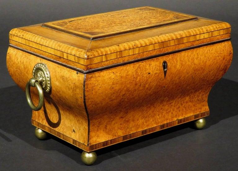 German Very Fine Biedermeier Tea Caddy of Bombe Form in Exotic Woods, circa 1830 For Sale