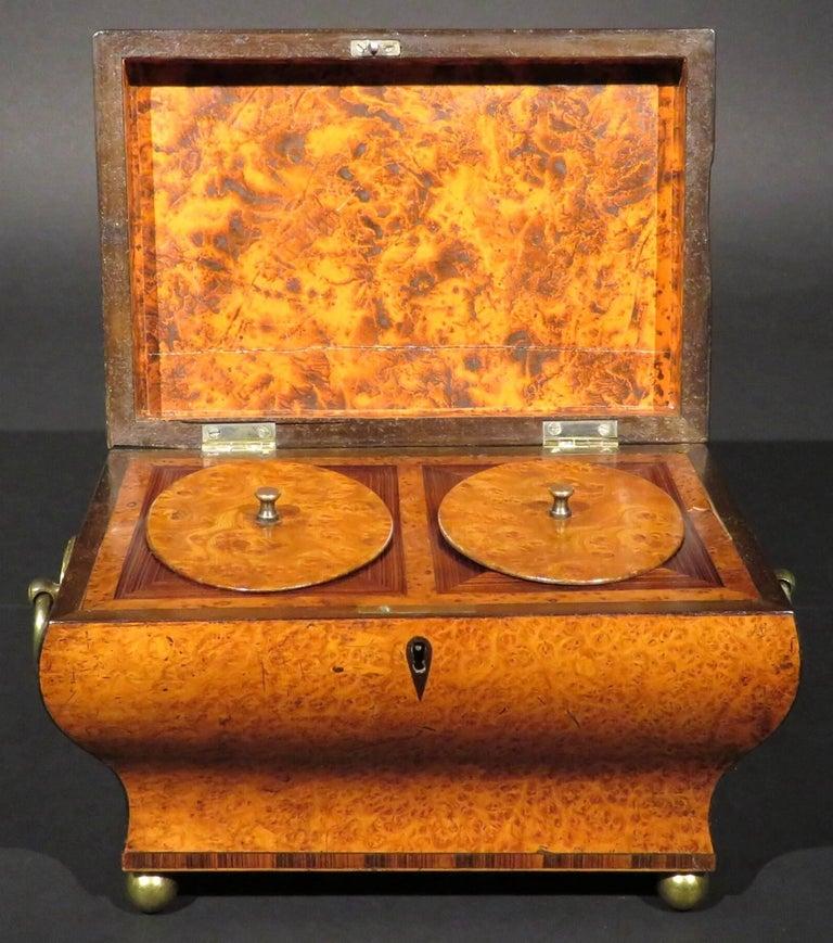 Zebra Wood Very Fine Biedermeier Tea Caddy of Bombe Form in Exotic Woods, circa 1830 For Sale