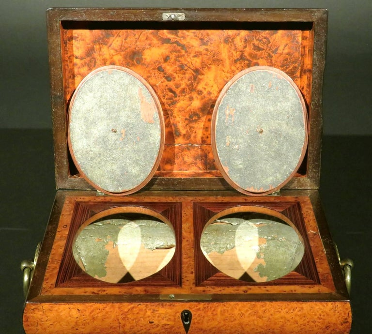 Very Fine Biedermeier Tea Caddy of Bombe Form in Exotic Woods, circa 1830 For Sale 1