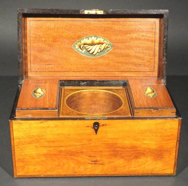 A Very Fine George III Inlaid Satinwood Tea Caddy, England Circa 1800   For Sale 1