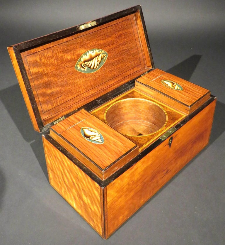 A Very Fine George III Inlaid Satinwood Tea Caddy, England Circa 1800   For Sale 4