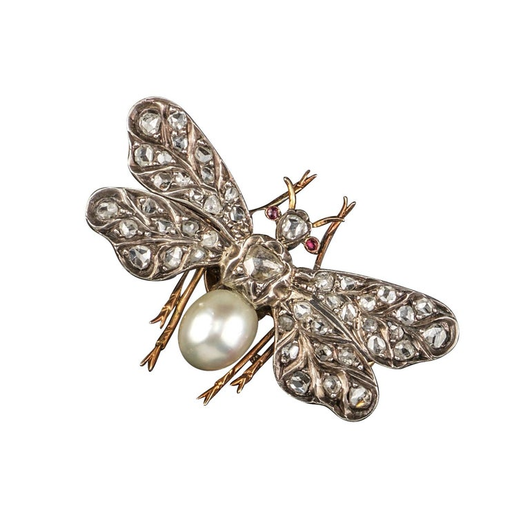 Victorian Diamond and Pearl Insect Brooch For Sale
