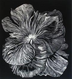 Bratek - XXI century, Linocut, Flower, Figurative Art, Black and white