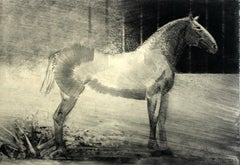 Lonely - XXI Century, Contemporary Figurative Etching Print, Animal, Horse