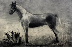 Horse from Casa Lorna - Contemporary Figurative Lithograph Print, Animal
