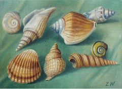 Shells - Contemporary Figurative Oil Painting, Still life, Muted Colors, Realism