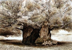 An oak - XXI Century, Contemporary Figurative Watercolor Painting, Tree, Nature