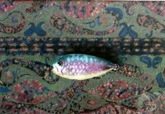 Carp - XX century, Pastel figurative, Colourful