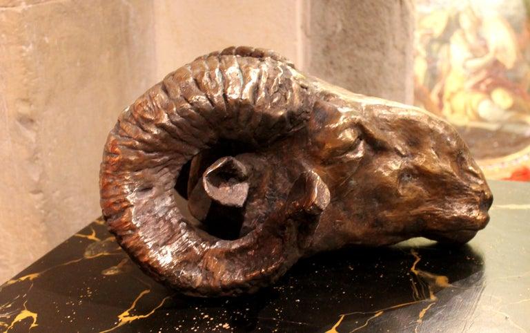 Ram Head, Bronze Sculpture, Lost Wax Casting Technique  For Sale 1