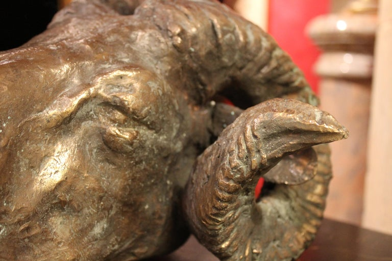 Ram Head, Bronze Sculpture, Lost Wax Casting Technique  For Sale 2