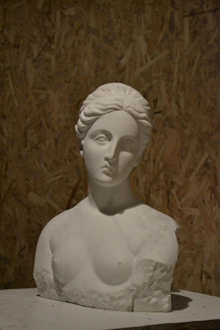 White Carrara Venus Marble Bust, Pietrasanta, 2017 - Sculpture by Jessica Ielpo
