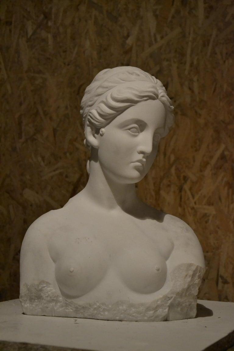 White Carrara Venus Marble Bust, Pietrasanta, 2017 - Academic Sculpture by Jessica Ielpo