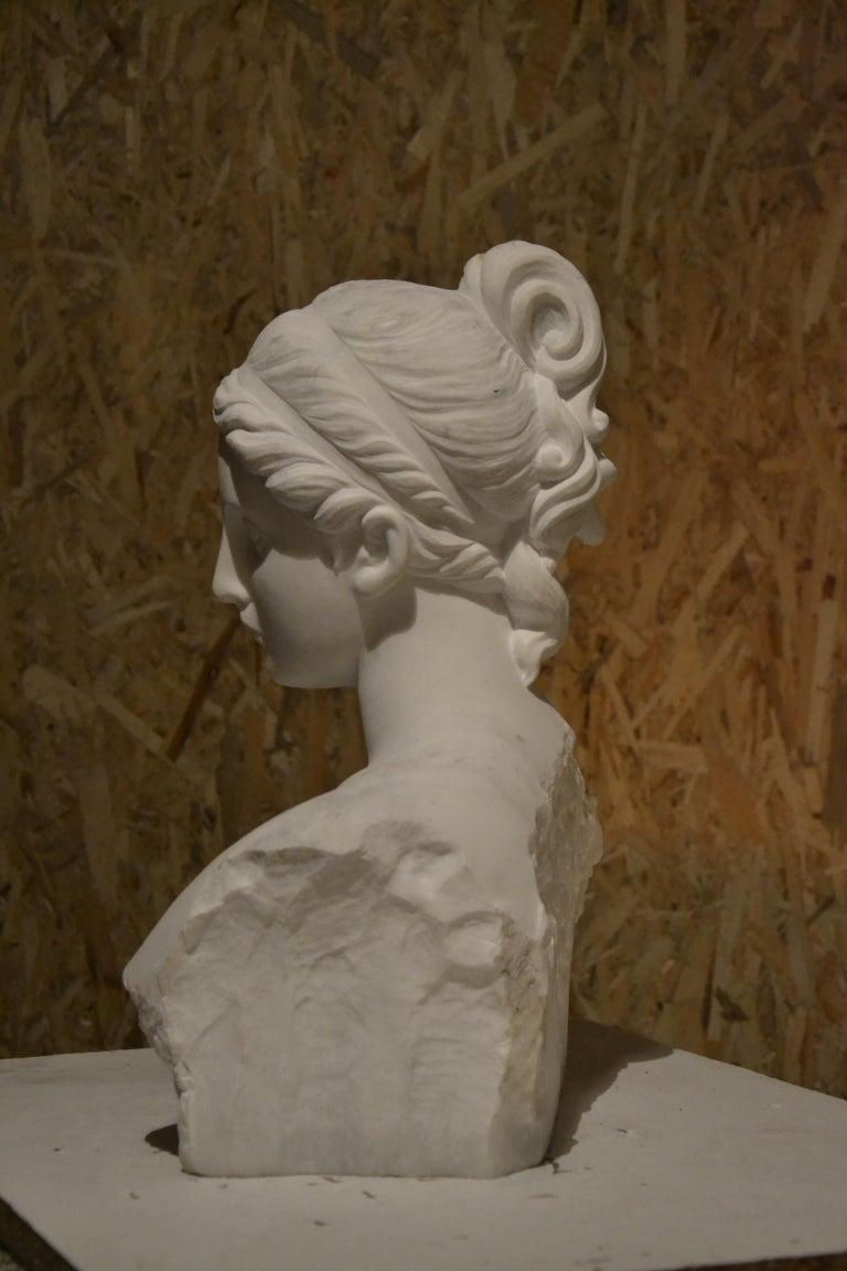 White Carrara Venus Marble Bust, Pietrasanta, 2017 4