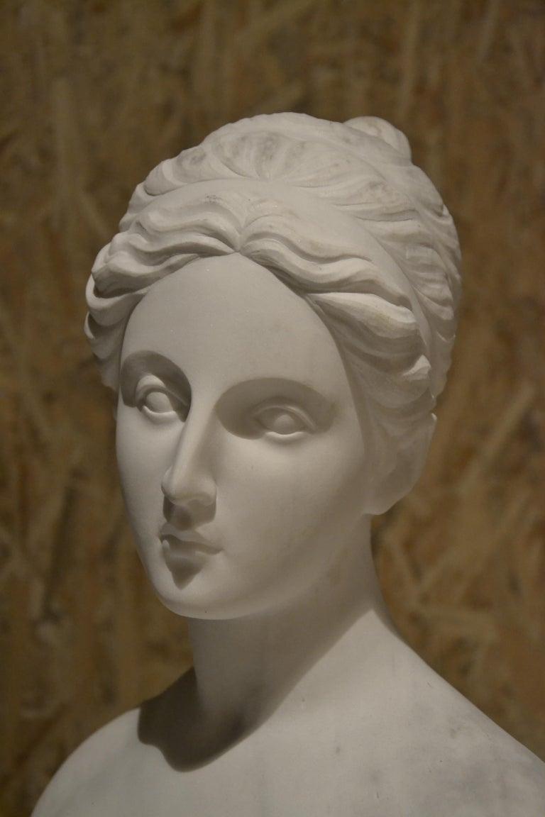 White Carrara Venus Marble Bust, Pietrasanta, 2017 5