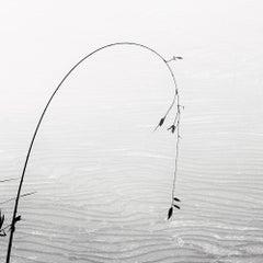 Vietnam 4 - Black and White Photography - Plexiglas