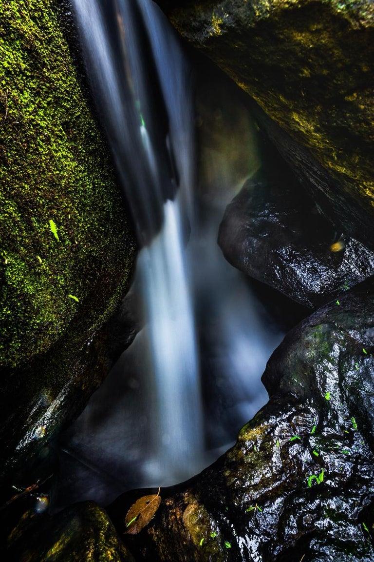Rodrigo Katayama Color Photograph - Heliodora, Minas Gerais, Brazil