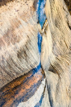 Nature Abstracts I