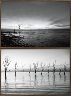 Daniel Mansur - Epecuen (Black and White Diptych Photography)