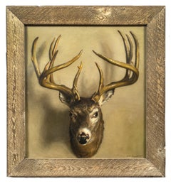 A Trompe l'oeil of a Stag's Head