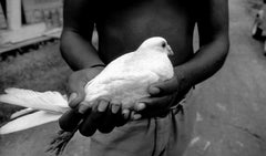 Manuello Paganelli, Hands of Freedom, Cuba (hands holding dove).